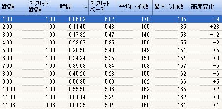 ランニング 2011-01-03_PACE.JPG