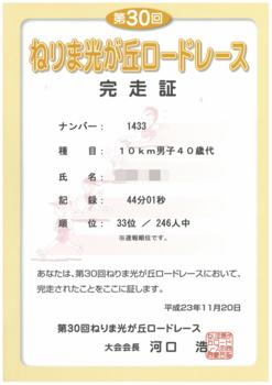 第30回光が丘ロードレース完走証_モザイク.png