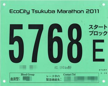 第31回つくばマラソン_ゼッケン_モザイク.png